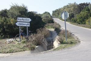 Tanger : Slokia, un patrimoine forestier et écologique en péril