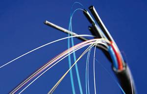Campus de Stanford : Google testera son premier réseau de fibre optique