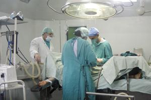 Réalisation de greffes rénales à partir d'un donneur en mort encéphalique