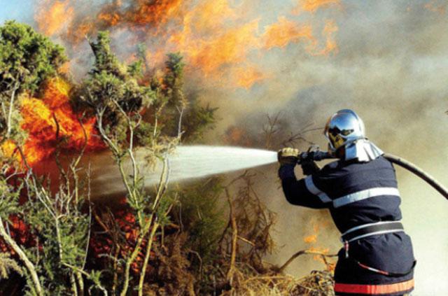 Agadir : un incendie ravage plusieurs hectares de forêt