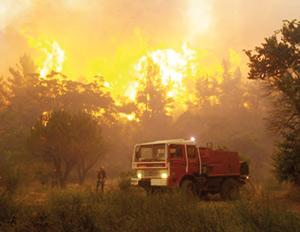 Incendies de forêt : Plus de 2.100 hectares ravagés par les feux entre janvier et août