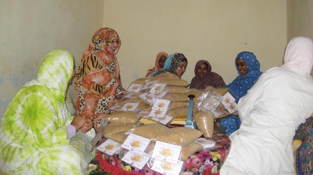 INDH à Laâyoune : 297 MDH mobilisés pour le financement de 698 projets durant la période 2005-2012