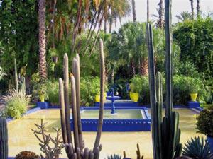 Marrakech : Les espaces verts, lieux prisés pour les balades nocturnes