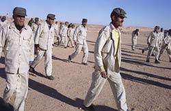 Vers la libération des 404 détenus Marocains