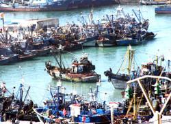 L'UE reconnait la marocanité du Sahara