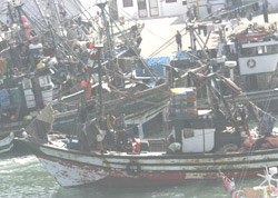 Pêche : Petit accord grands enjeux