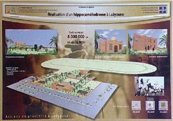Événement : Un hippocamélodrome à Laâyoune