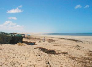 Laâyoune : La plage d'Amgriou séduit les investisseurs