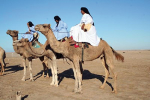 Aux origines de la poésie hassanie : Les jeunes poètes sahraouis sur les pas de leurs ancêtres