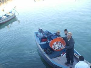 Les pêcheurs d'Asilah au creux de la vague