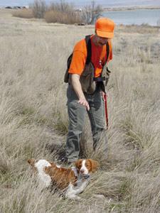 Souss-Massa-Darâa : Ouverture de la saison de la chasse