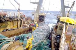Maroc-UE : L'Accord de Pêche débloqué