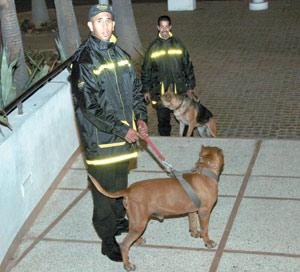 Les agents de sécurité tenus de ne pas empiéter sur les prérogatives de la police