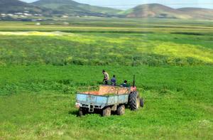 états-UNIS : L'agriculture marocaine séduit l'Oncle Sam