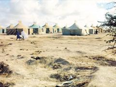 Le Polisario face à ses victimes