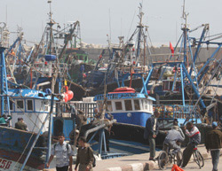 Pêche : 1,7 million de tonnes en 2007
