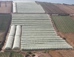 Secteur agricole : le plan du gouvernement