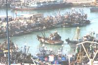 Pas de quota pour la flotte européenne