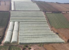 Maroc-UE : le volet agricole en question