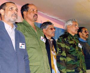 Le Polisario organise une campagne de propagande autour d'Aminatou Haidar