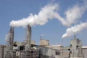 Santé : L'OMS s'alarme du réchauffement climatique