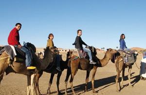 Oued Eddahab-Lagouira séduit les professionnels du tourisme