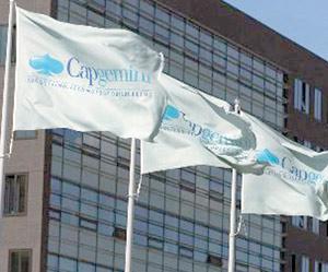 Convention : Capgemini s'installe à Casashore