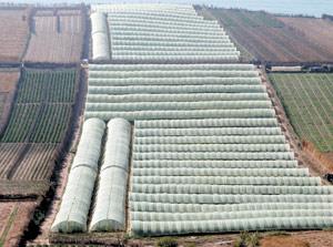 Agriculture : vers des études d'impact