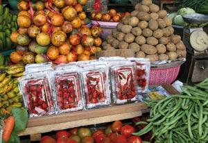 Les fruits et légumes diminuent le risque de cancer pour les fumeurs
