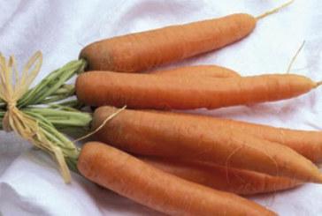 Les carottes protègent-elles contre la perte de vision ?