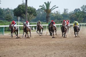 Le Grand Prix Mohammed VI reprend ses droits