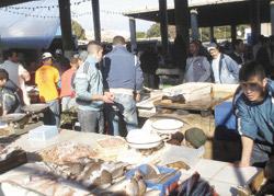 Tanger : Lancement des travaux de rénovation du marché aux poissons