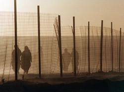 Tindouf : Répression à huis clos dans les camps
