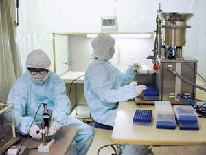 Transplantation : Des chercheurs créent un coeur de rat en laboratoire