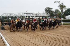 Casablanca se prépare pour le Grand Prix Moulay Rachid