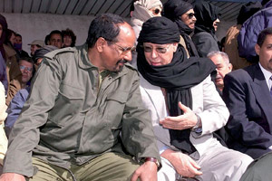 Sahara : 250 activistes espagnols pro-Polisario piégés pendant 24 heures à l'aéroport de Tindouf