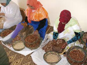 Deux Fonds dédiés pour la région Souss-Massa-Drâa