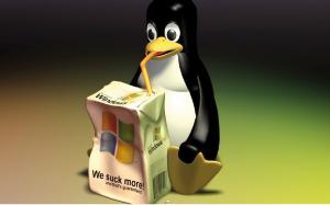 Linux en entreprise : comment interagir sans aucun problème ?
