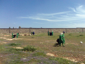 Holcim participe au ramassage de plus de 20 tonnes de sacs en plastique