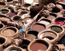 Industrie : Le secteur du Cuir veut faire peau neuve