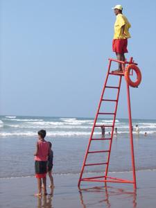 Les maîtres-nageurs, des soldats qui veillent à la sécurité des baigneurs
