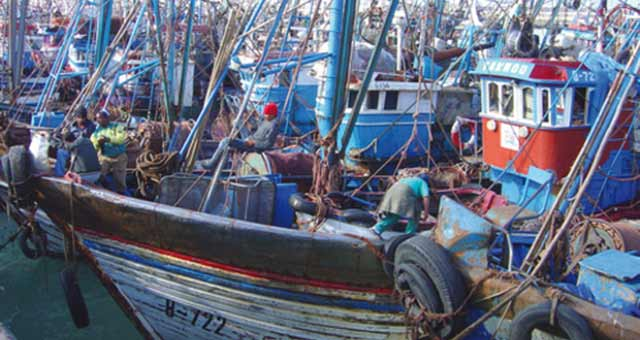Pêche côtière et artisanale : Les débarquements en hausse de 7% à fin août 2013