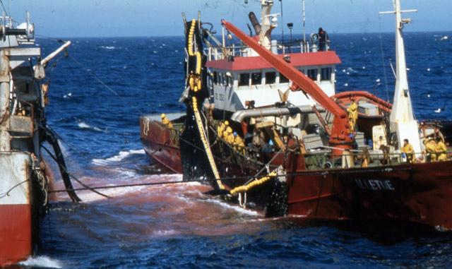 Le protocole de pêche Maroc-UE franchit un nouveau pas à Bruxelles