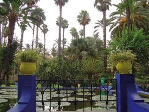 Selon The Daily Mail : Marrakech, «la plus fascinante métropole»