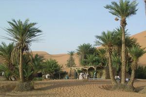 Les oasis au Maroc, un rempart efficace contre la désertification