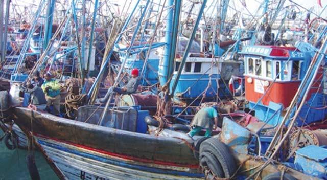Hausse de 43 % des débarquements de la pêche côtière à fin juillet