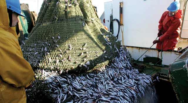 Accord de pêche : Les Espagnols fatigués d attendre