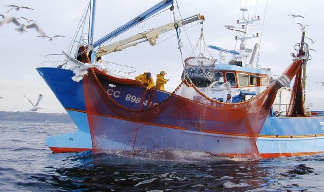 Industries des produits de la mer: L innovation  et la recherche comme leviers de  développement