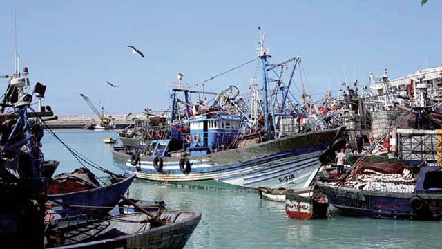 La pêche marocaine a le vent en poupe