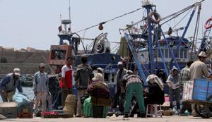 74 navires autorisés à pêcher les petits pélagiques en Atlantique sud